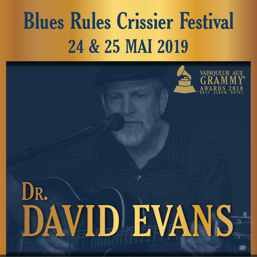 Dr. David Evans @ blues rules